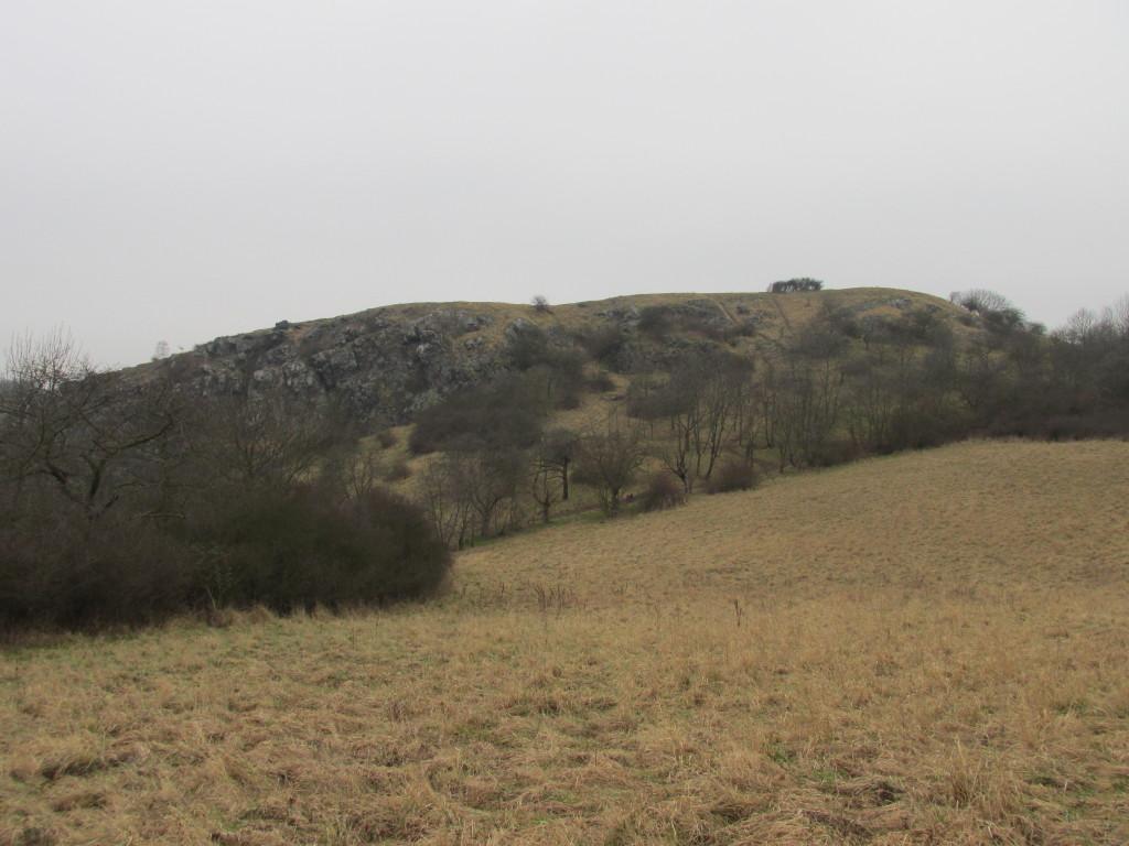 pohled na hradiště od Ovčí studánky
