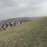 pohled směrem k Barrandovu a Prokopskému údolí